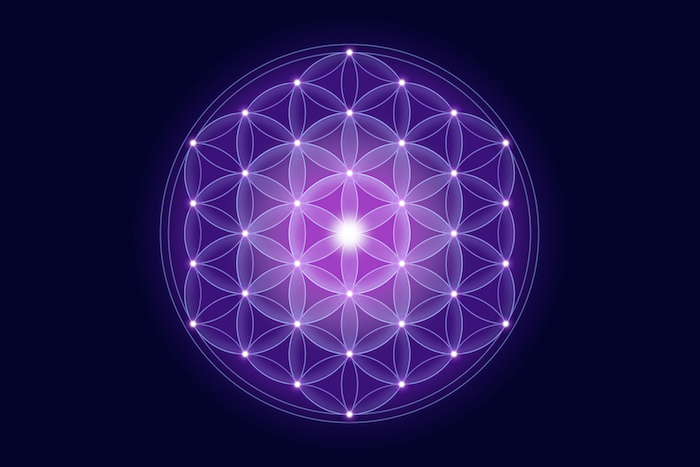 THE FLOWER OF LIFE EPUB DOWNLOAD