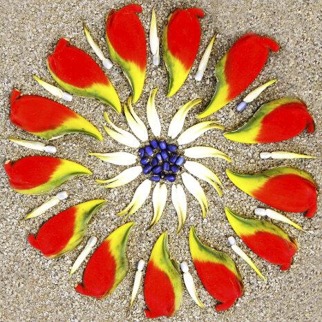 mandala flower mandalas for the soul. Black Bedroom Furniture Sets. Home Design Ideas